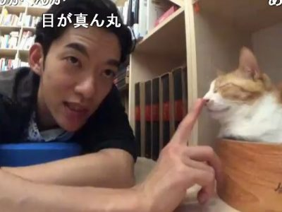 猫におすすめのアイテムや本をメンタリストDaiGoが紹介